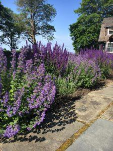 Burnett's Landscaping - Garden Installation Services